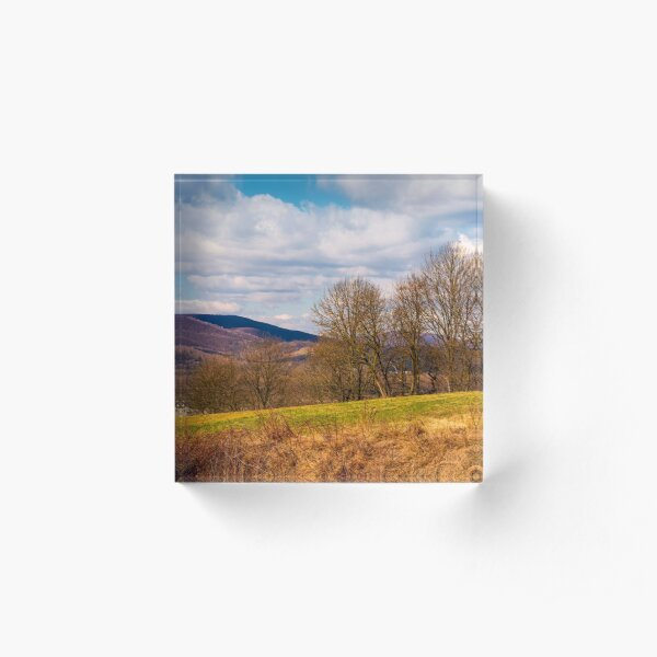 orchard in mountainous rural area Acrylic Block