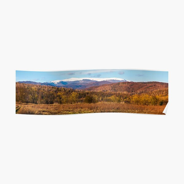 springtime countryside with snowy mountain Poster