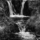 Waterfall by Anita Harris