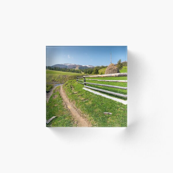 beautiful Carpathian countryside in springtime Acrylic Block