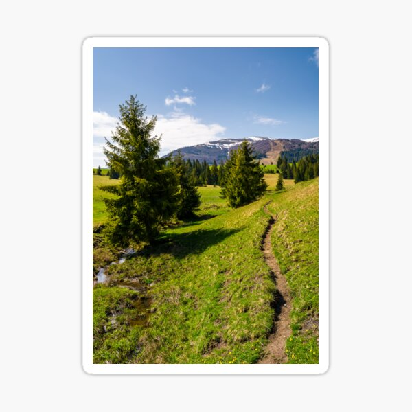 narrow footpath along the forested hills Sticker