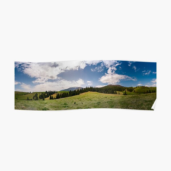 beautiful panorama of mountainous area in spring Poster