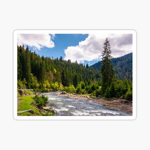 beautiful landscape with forest river in mountains Sticker