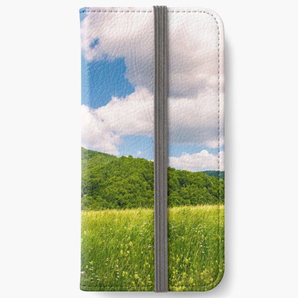haystack on the grassy field in mountains iPhone Wallet