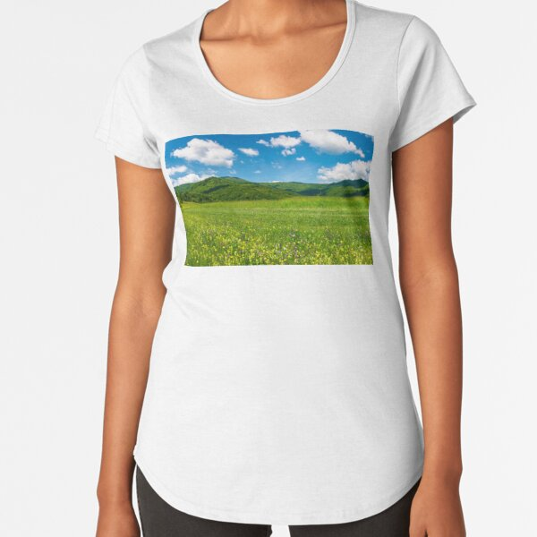 beautiful landscape with meadow in mountains Premium Scoop T-Shirt