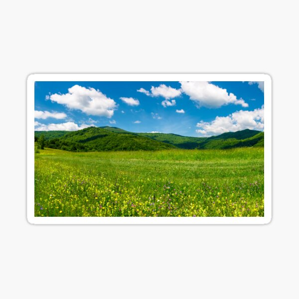 beautiful landscape with meadow in mountains Sticker