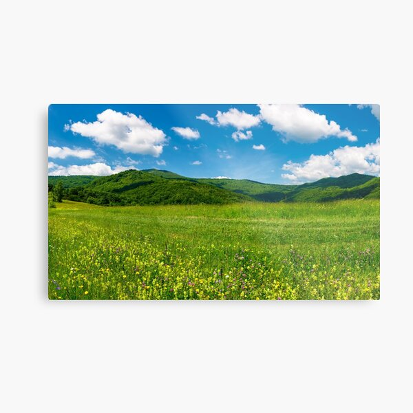 beautiful landscape with meadow in mountains Metal Print