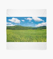 beautiful landscape with meadow in mountains Scarf