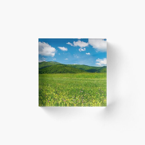 beautiful landscape with meadow in mountains Acrylic Block