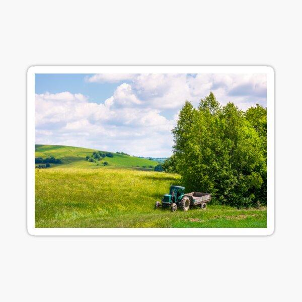 grassy fields on rolling hills in summer Sticker