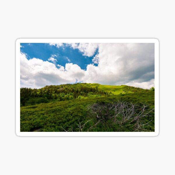 beautiful mountain landscape in summertime Sticker
