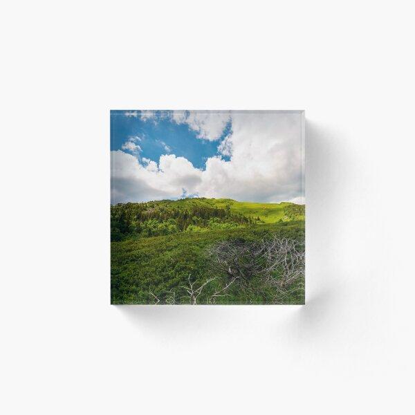 beautiful mountain landscape in summertime Acrylic Block