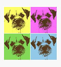 Border Terrier Gifts for Dog Lovers Andy Warhol Inspired Neon Pink, Yellow, Green, Blue Photographic Print