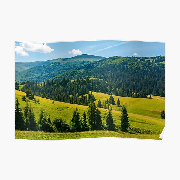 beautiful summer landscape in mountains Poster