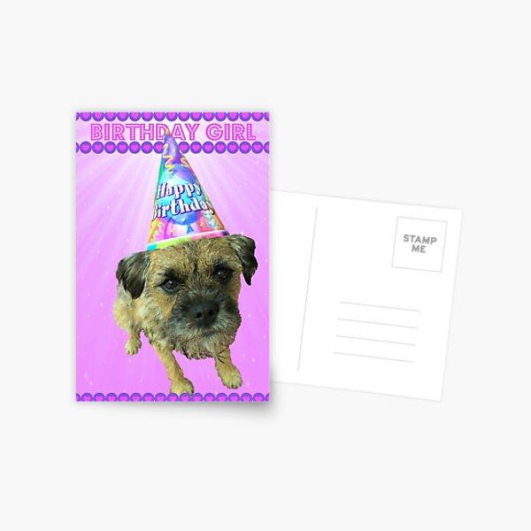 Border Terrier Birthday Girl Card Pink Postcard