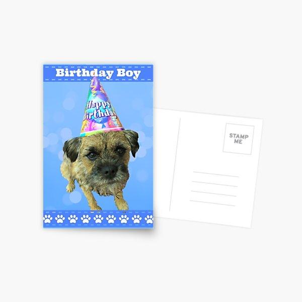 Border Terrier Birthday Boy Card Blue Postcard