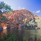 Ellery Creek Big Hole by Richard  Windeyer