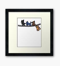 Playing cats Framed Print