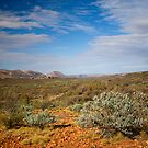 Western MacDonnell Ranges by Richard  Windeyer