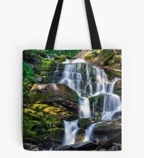 Carpathian waterfall Shypot in the morning Tote Bag