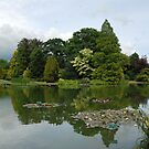 Burnby Hall, the main lake by dougie1