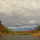 Glen Helen Gorge by Richard  Windeyer