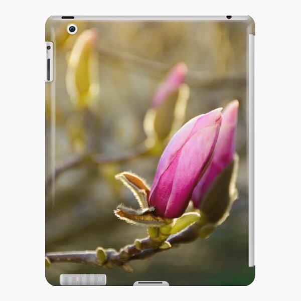 purple flowers of magnolia tree blossom iPad Snap Case