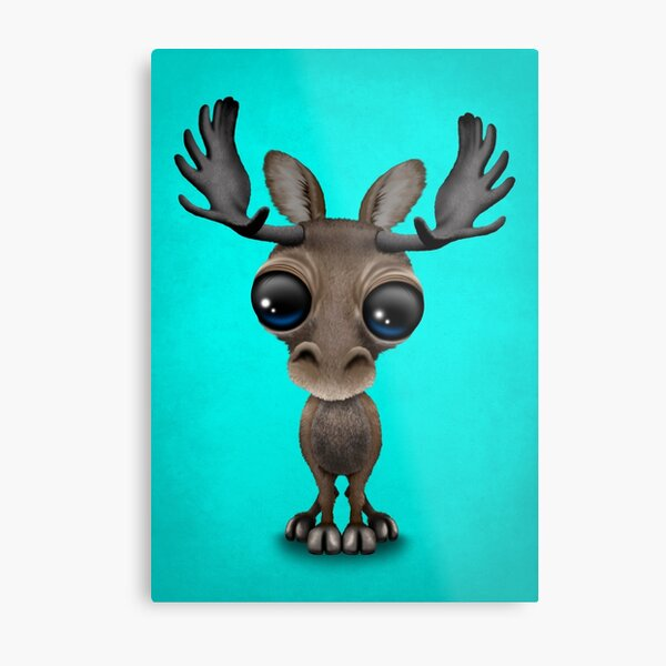 Cute Curious Baby Moose Calf with Big Eyes on Blue Metal Print