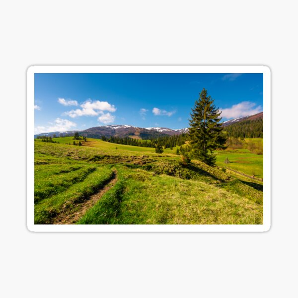 rural are in Carpathian mountains in springtime Sticker