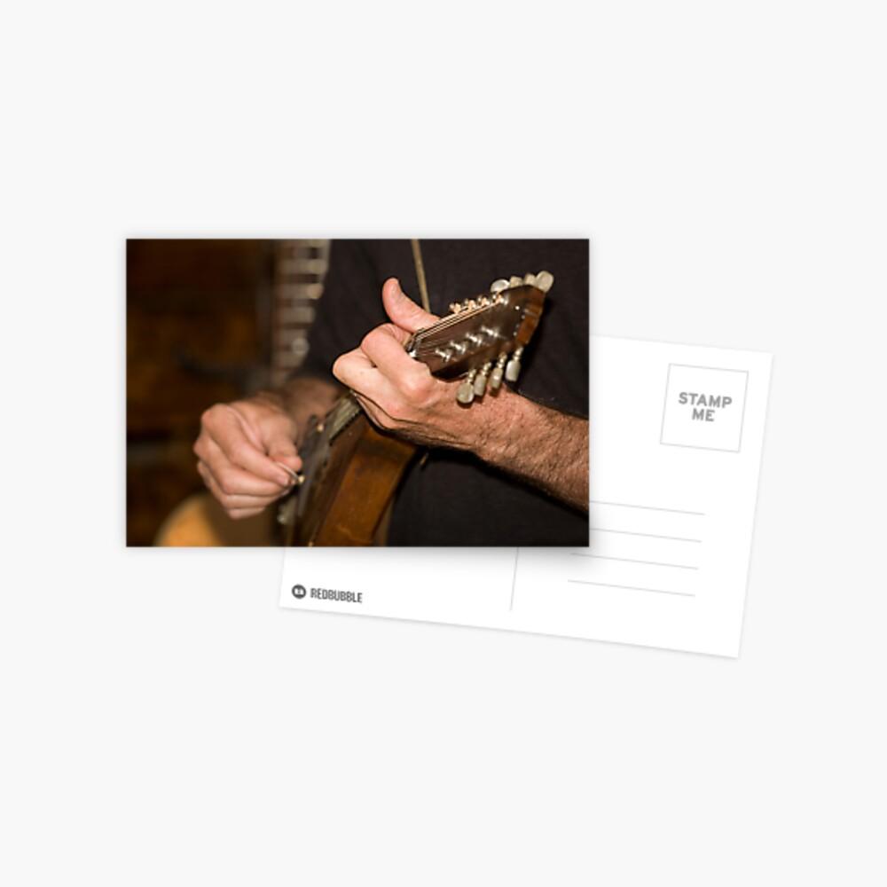 Mandolin Player Postcard