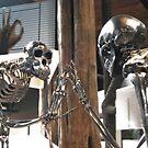 terminator chimps by NordicBlackbird