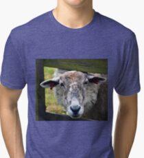 A Very Endearing Ewe.......... Tri-blend T-Shirt