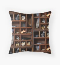 A Collection of Curiosities Floor Pillow