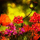 Fantasy Garden by LudaNayvelt