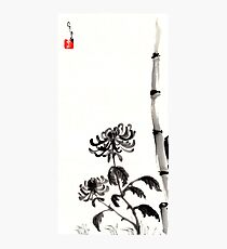 Chrysanthemum & Bamboo Photographic Print
