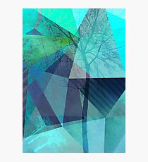 P19-B4 TREES AND TRIANGLES Photographic Print