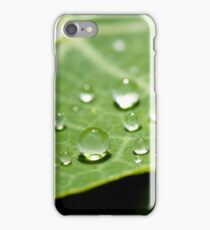 Precipice iPhone Case/Skin