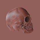 Pink Skull by Platinumfrog