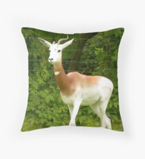 Whtie deer at the zoo. Throw Pillow