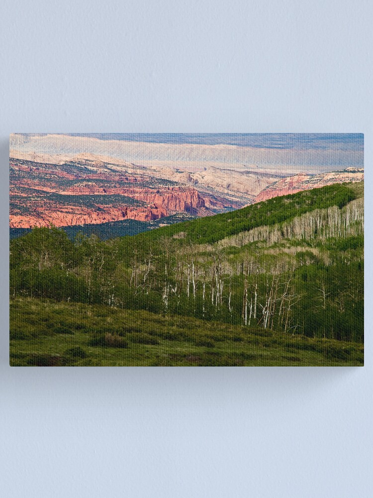 Alternate view of Today and yesterday Canvas Print