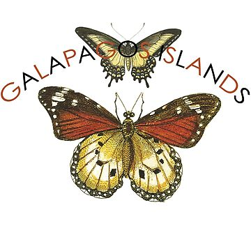 Galapagos Islands Butterflies by Zehda