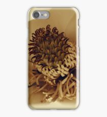 Up Close and Personal With A Magnolia Blossom iPhone Case/Skin