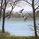 Goose Pond by amdunnart