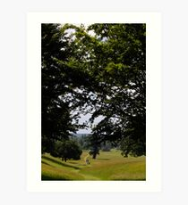Woburn Walks Art Print
