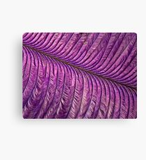 Purple Quill Canvas Print