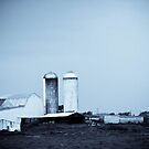 Old Farm by NervousNellie