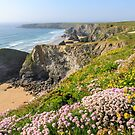 Bedruthan Steps and flower covered cliffs    Cornwall  by Chris Warham