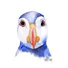 puffin by RavensLanding