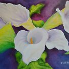 Callas That Were A Gift by Colette Hope Marks