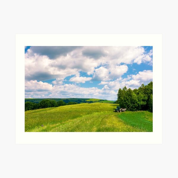 agricultural fields on hills Art Print